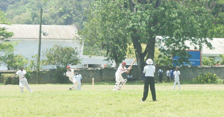Cricket Training