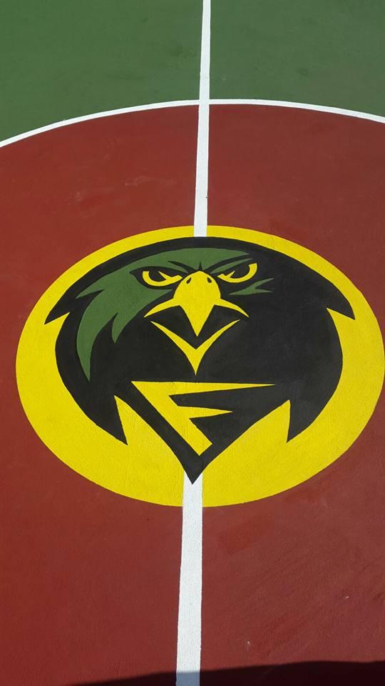 Pichelin & Falcons
