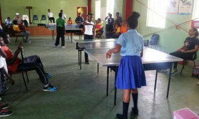 Primary Schools Table Tennis District Festival