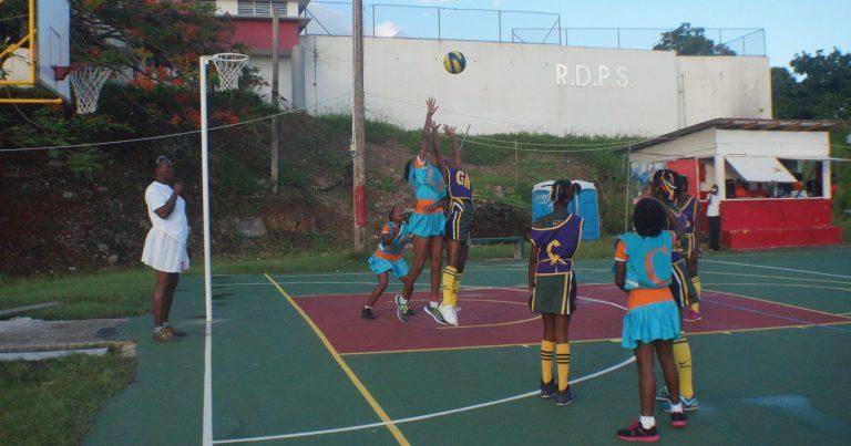 2017 Primary Schools Netball