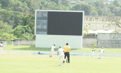 Cricket Running