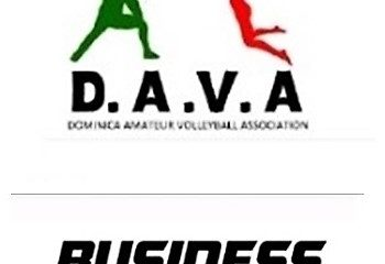 DAVA Business League