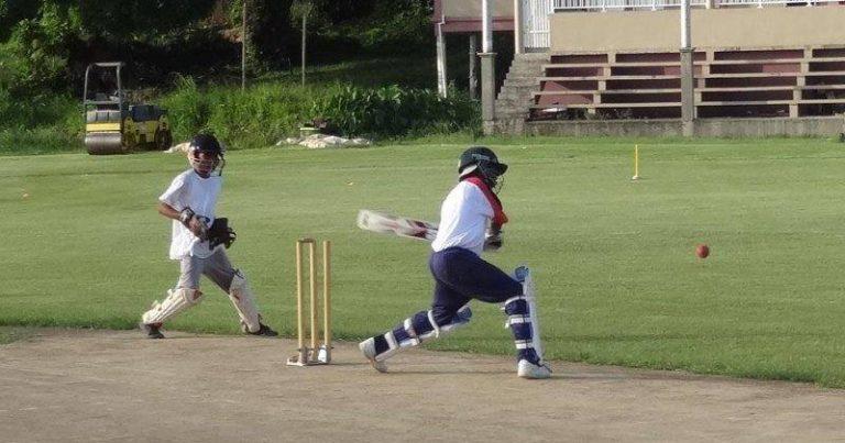 Culmination Of The Primary Schools Cricket Festival
